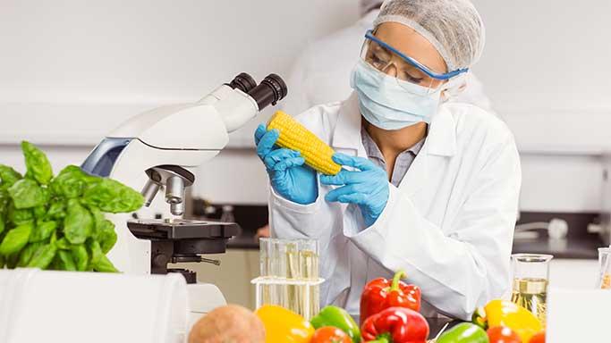 Microbiología en alimentos