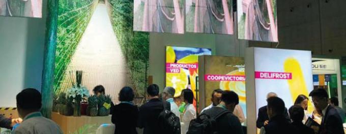 Feria Internacional en china