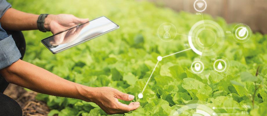 Aplicaciones para el sector agricolas