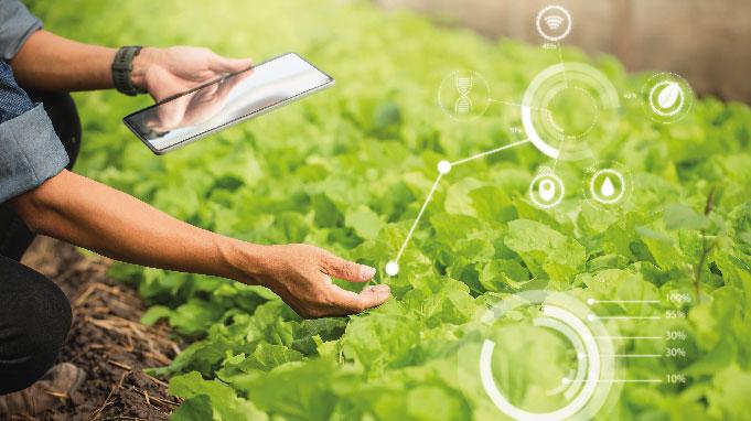 control en los cultivos digitalmente