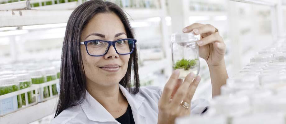 Mujer, biotecnóloga sosteniendo una muestra de plantas.